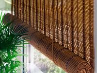 bamboo31